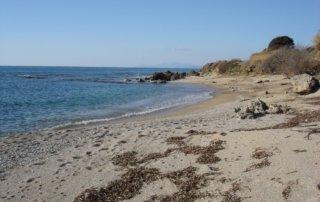 FRONT LAND seashore